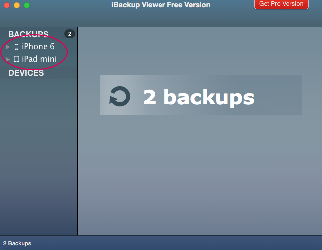 iBackup Viewer